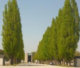 Jedes_Geschlecht_verdient_Respekt__Dachau_05