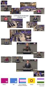 2018-10-11 Deutscher Bundestag v1.07
