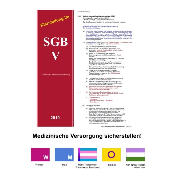 Medizinische Versorgung SGB Ergänzung Anpassung Auszug aus Gesetzesempfehlung GvielfSelbstBestG  VJ v8.115 AUSZÜGE v1.02.jpg