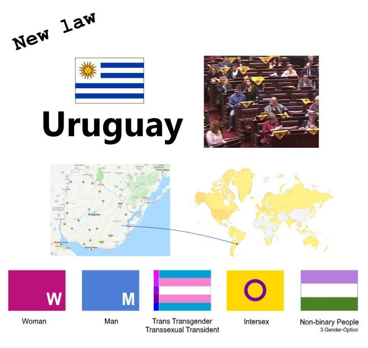 Trans Transgender Transsexual Transident law Uruguay 2018 Intersex Non-binary people v6.12